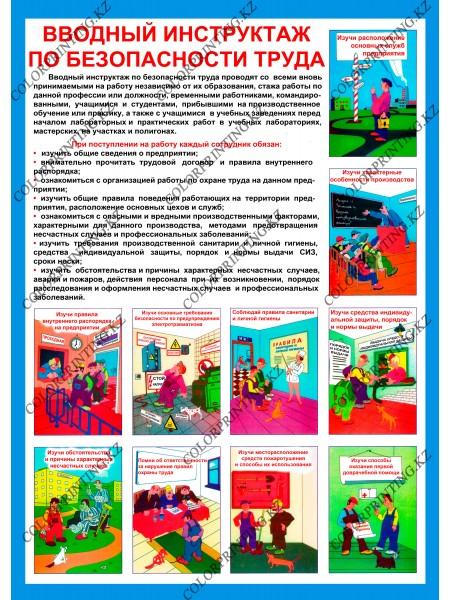 Вводный инструктаж по безопасности труда 1 плакат